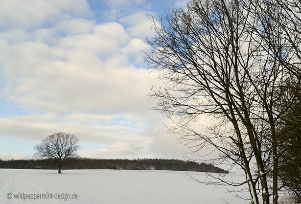 winterlandschaft januar 2016, schneelandschaft, düstere wolken, wintersonne, wildeschoenheiten.wordpress.com
