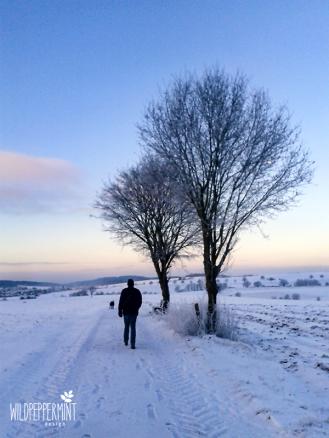 wintermorgen, morgenstimmung im winter, sonnenaufgang winter, wildeschoenheiten.wordpress.com